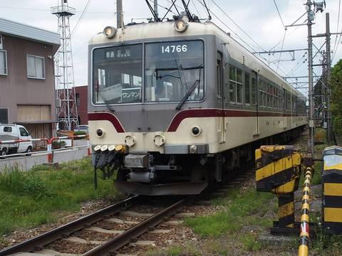 P5140035-STY.JPG